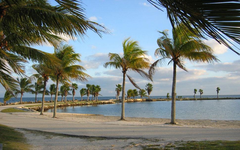 туры во флориду зимой